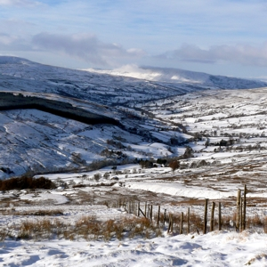 The driving road, western flank of Great Knoutberry, Dentdale