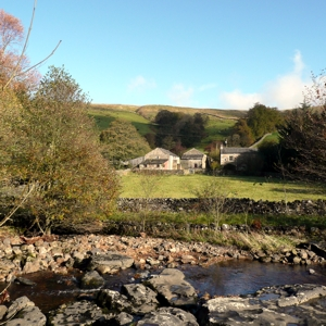 Near Cow Dub, Dentdale